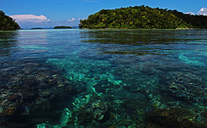 Solomon Islands : Travel :  Photos : Richard Moore : Photographer